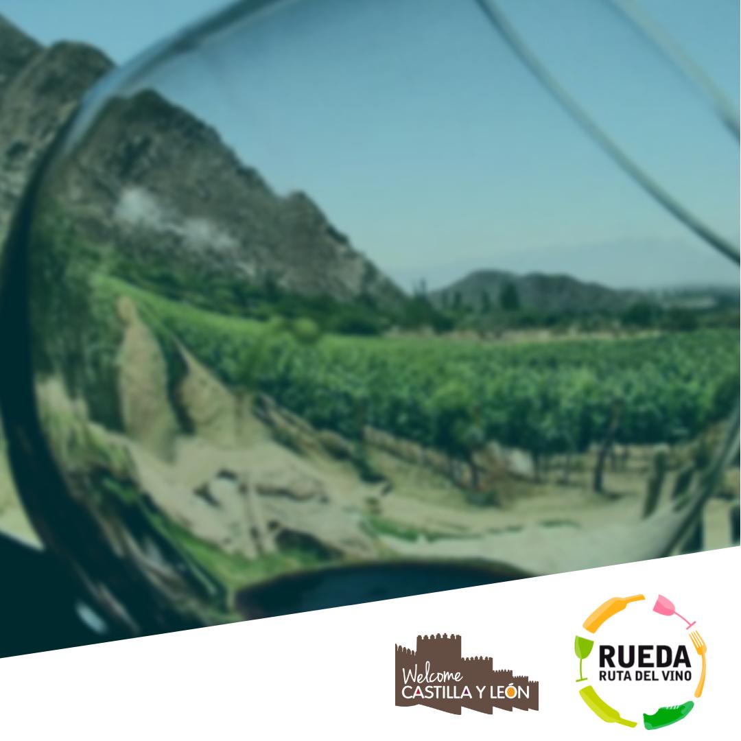 Experiencias Ruta del Vino de rueda: Rueda Luxury